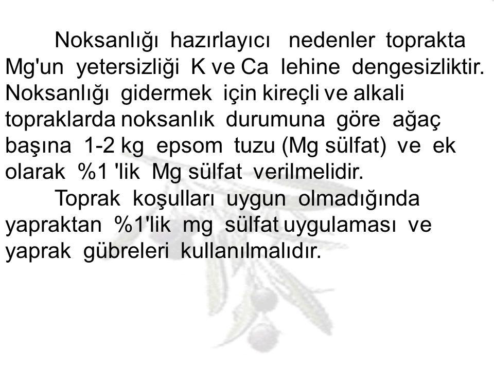 Mg NOKSANLIĞI Yaprakta mg içeriği %0,08 olduğunda noksanlıklar var demektir.