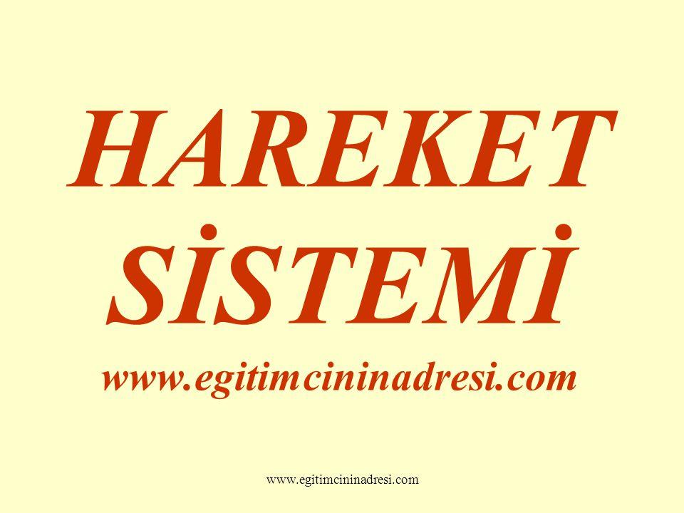 HAREKET SİSTEMİ www.egitimcininadresi.com www.egitimcininadresi.com