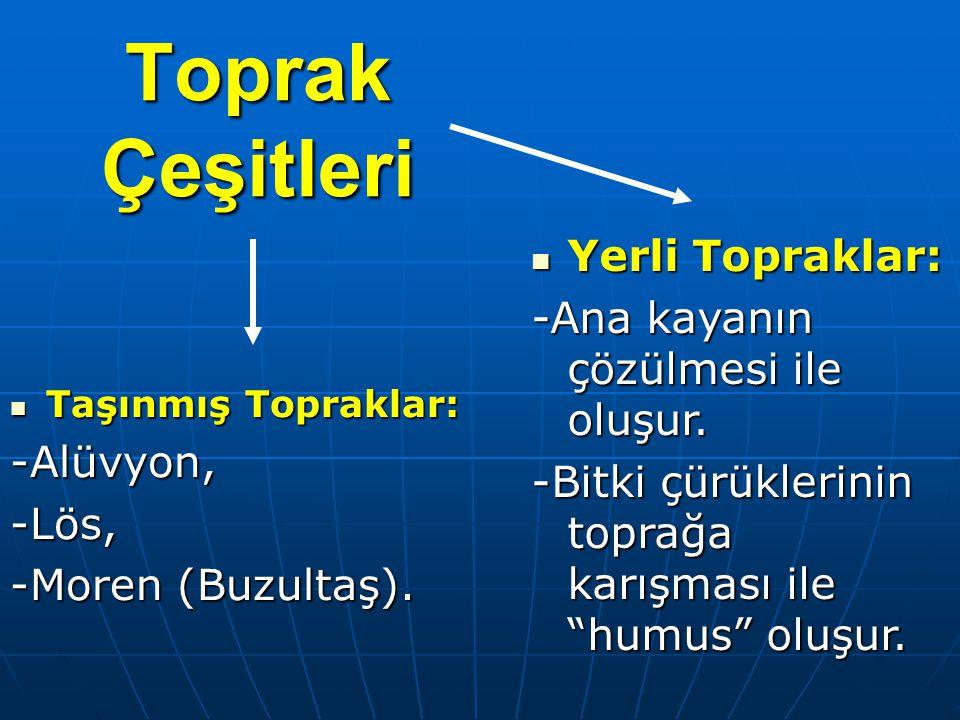 Toprak Çeşitleri Taşınmış Topraklar: Taşınmış Topraklar:-Alüvyon,-Lös, -Moren (Buzultaş).