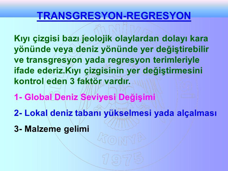 TRANSGRESYON-REGRESYON Kıyı çizgisi bazı jeolojik olaylardan dolayı kara yönünde veya deniz yönünde yer değiştirebilir ve transgresyon yada regresyon terimleriyle ifade ederiz.Kıyı çizgisinin yer değiştirmesini kontrol eden 3 faktör vardır.