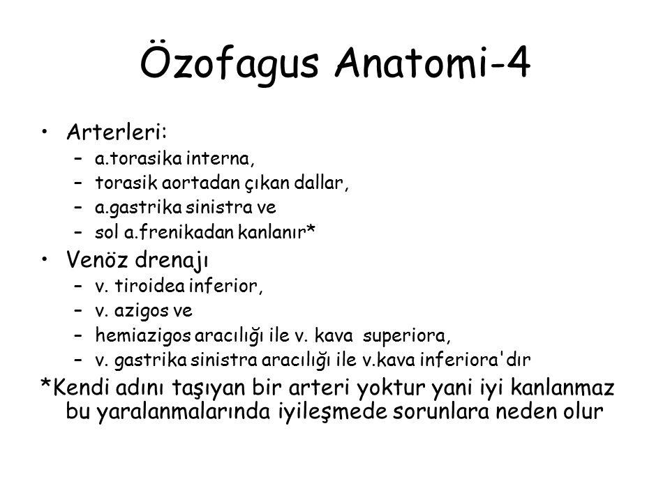 Özofagus Anatomi-4 Arterleri: –a.torasika interna, –torasik aortadan çıkan dallar, –a.gastrika sinistra ve –sol a.frenikadan kanlanır* Venöz drenajı –