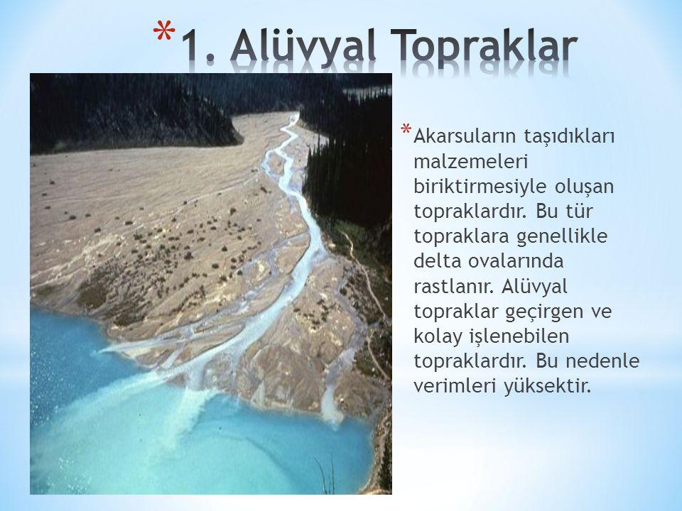 * Akarsuların taşıdıkları malzemeleri biriktirmesiyle oluşan topraklardır. Bu tür topraklara genellikle delta ovalarında rastlanır. Alüvyal topraklar