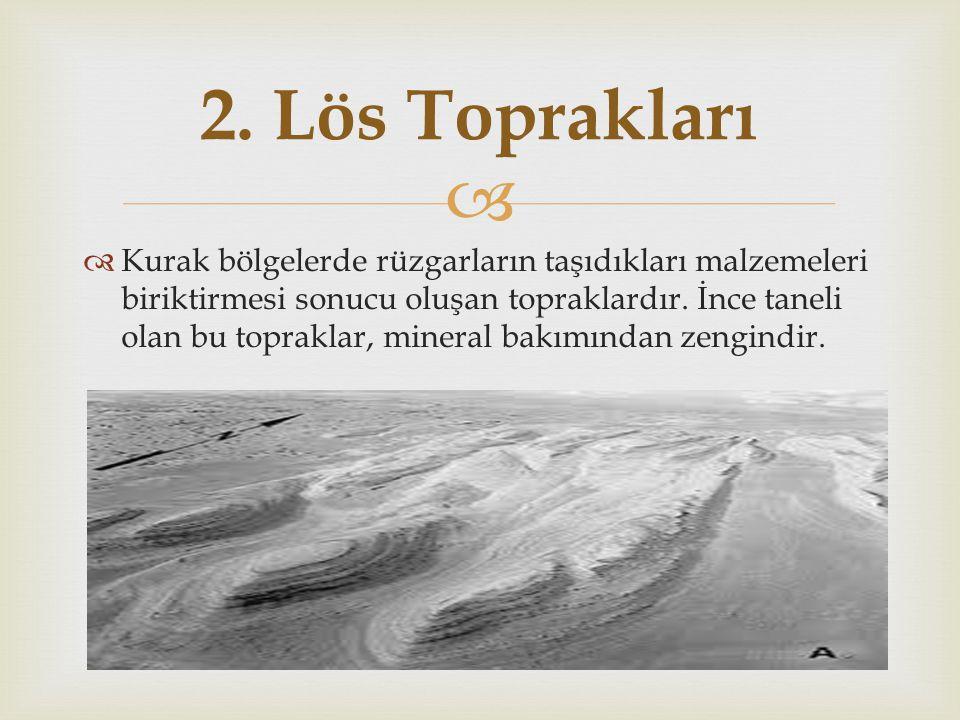   Kurak bölgelerde rüzgarların taşıdıkları malzemeleri biriktirmesi sonucu oluşan topraklardır. İnce taneli olan bu topraklar, mineral bakımından z