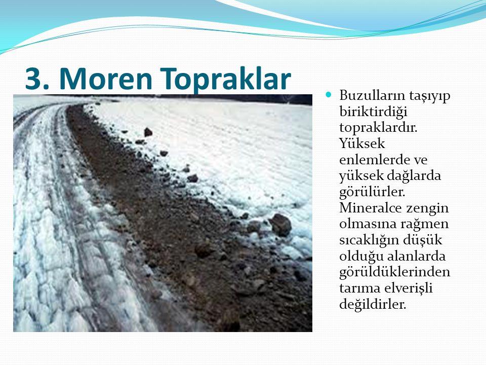 3. Moren Topraklar Buzulların taşıyıp biriktirdiği topraklardır. Yüksek enlemlerde ve yüksek dağlarda görülürler. Mineralce zengin olmasına rağmen sı