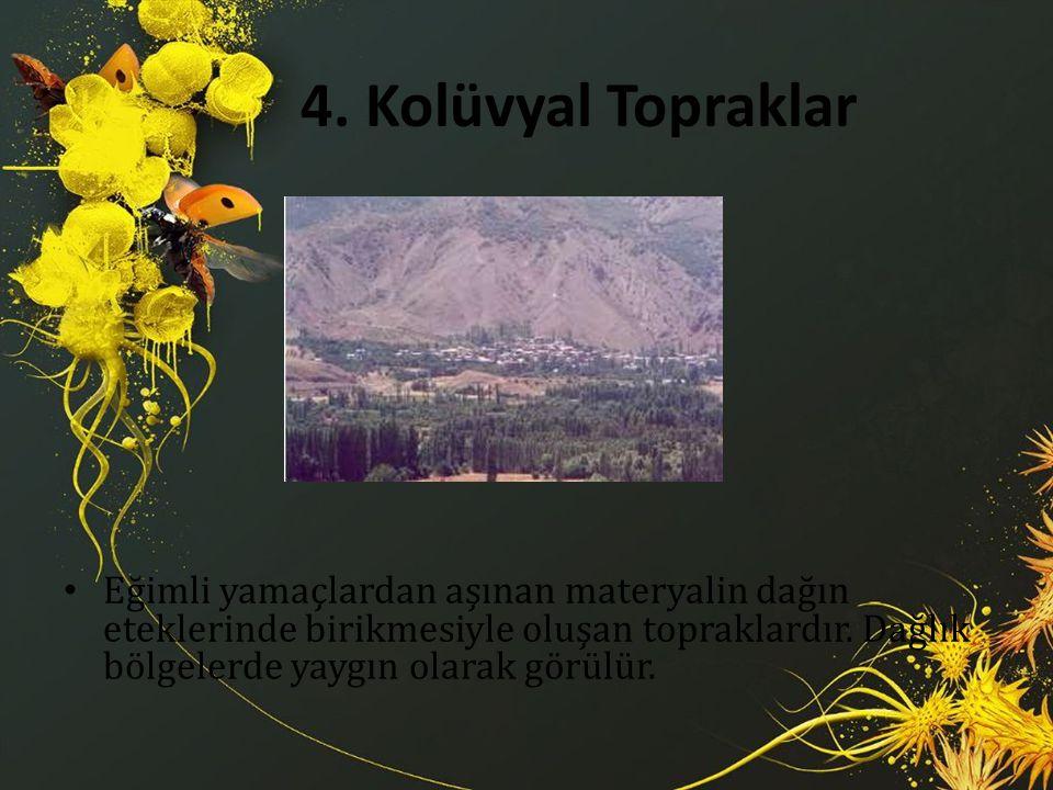 4. Kolüvyal Topraklar Eğimli yamaçlardan aşınan materyalin dağın eteklerinde birikmesiyle oluşan topraklardır. Dağlık bölgelerde yaygın olarak görülür