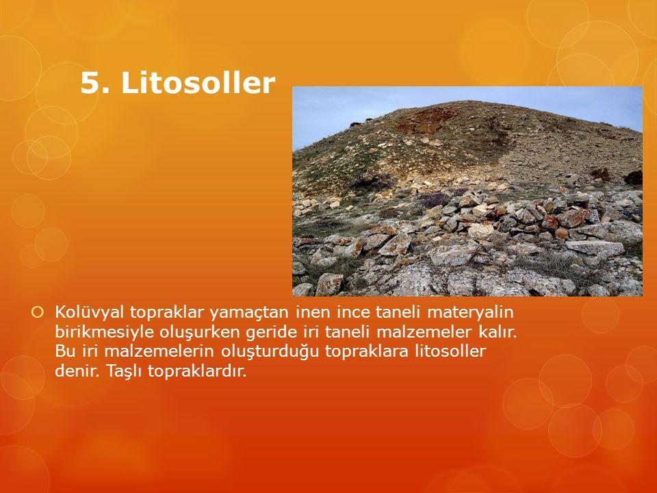 5. Litosoller  Kolüvyal topraklar yamaçtan inen ince taneli materyalin birikmesiyle oluşurken geride iri taneli malzemeler kalır. Bu iri malzemeler
