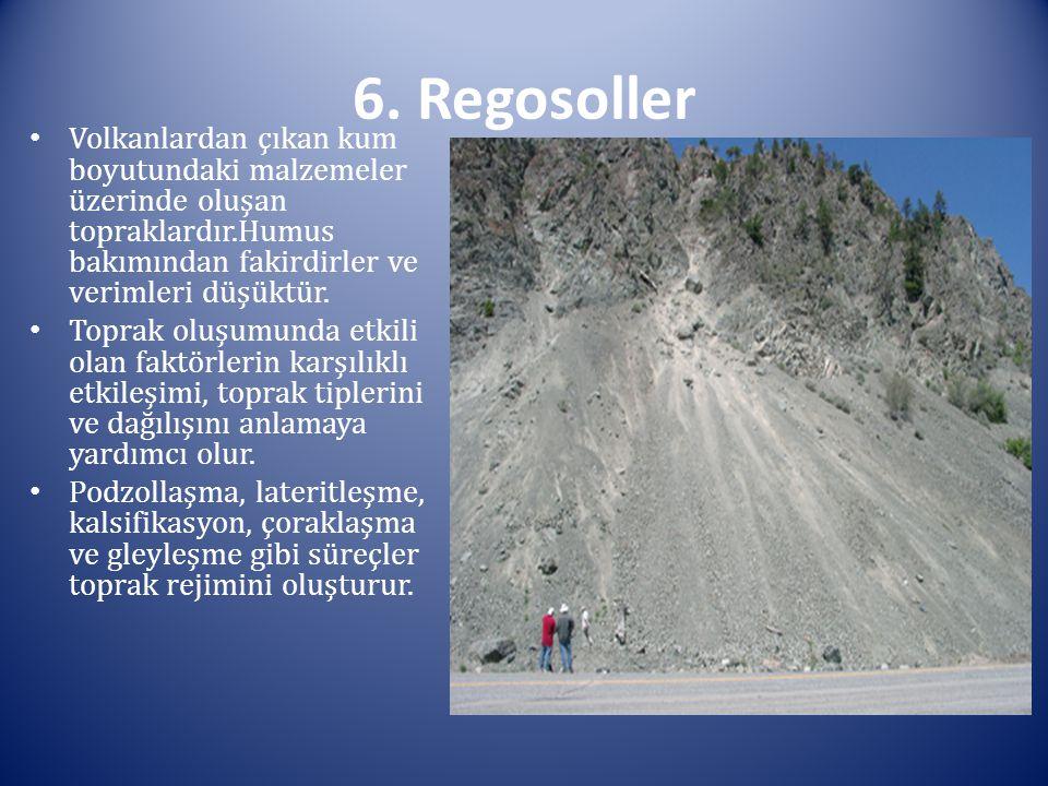6. Regosoller Volkanlardan çıkan kum boyutundaki malzemeler üzerinde oluşan topraklardır.Humus bakımından fakirdirler ve verimleri düşüktür. Toprak o