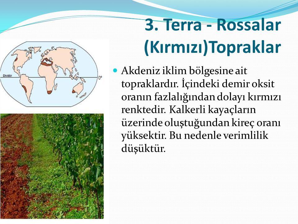 3. Terra - Rossalar (Kırmızı)Topraklar Akdeniz iklim bölgesine ait topraklardır. İçindeki demir oksit oranın fazlalığından dolayı kırmızı renktedir.
