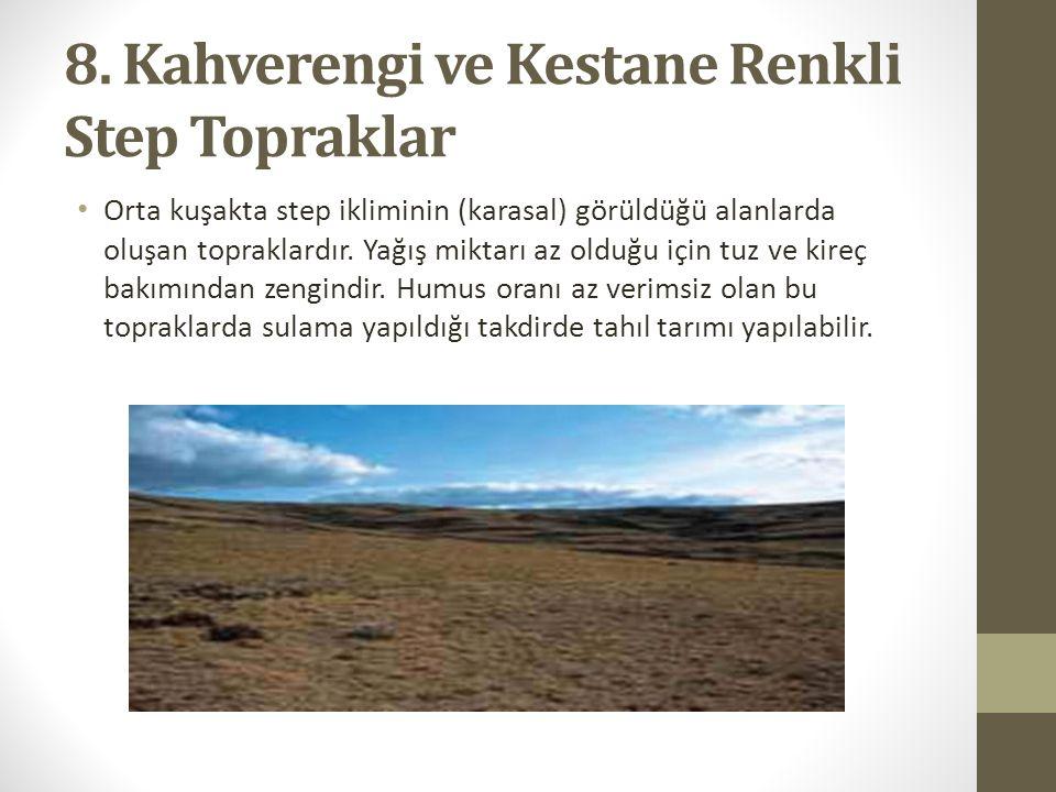 8. Kahverengi ve Kestane Renkli Step Topraklar Orta kuşakta step ikliminin (karasal) görüldüğü alanlarda oluşan topraklardır. Yağış miktarı az olduğu