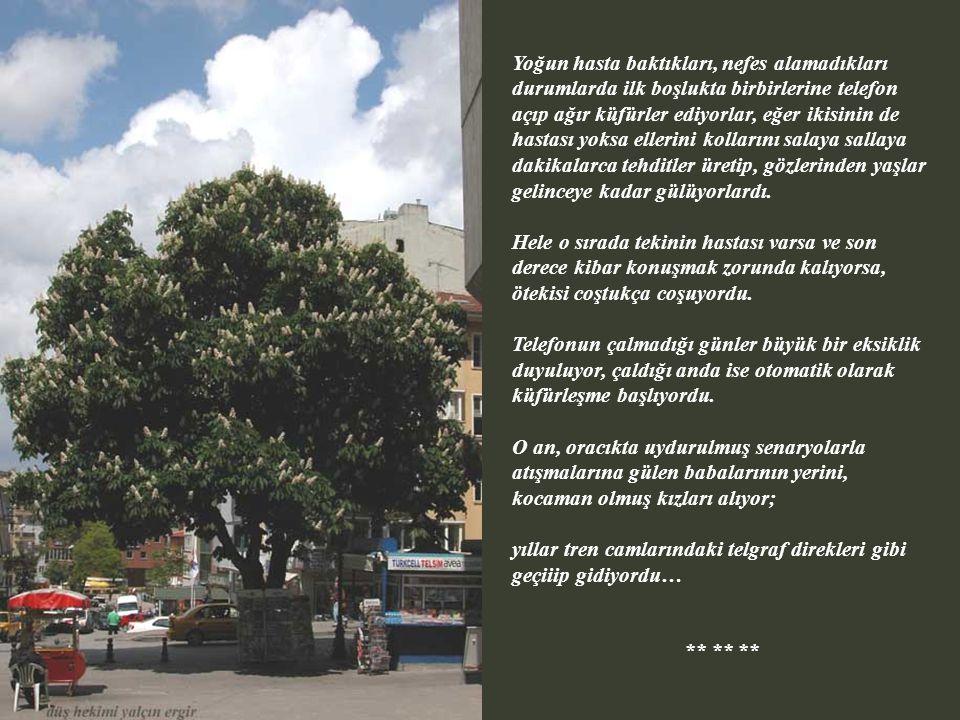 Tangır tungur sarı Vosvos'la, teybin sesi sonuna kadar açıkken yine Hacettepe'nin spor salonuna gidiyorlardı. Mete topu ayağına alıp, herkesi soldan s