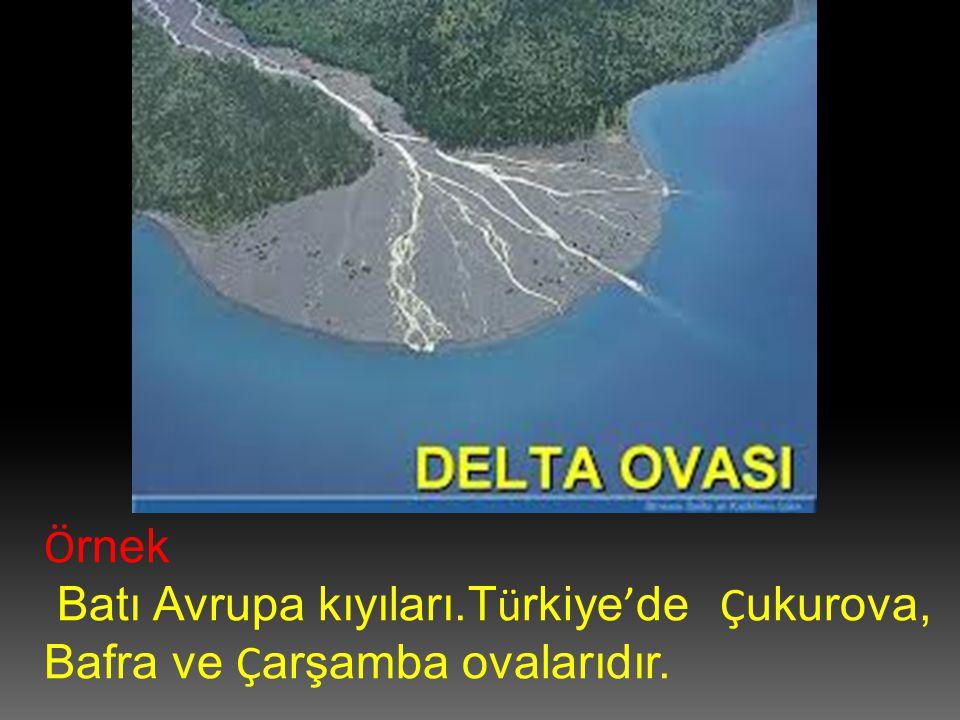 Ö rnek Batı Avrupa kıyıları.T ü rkiye ' de Ç ukurova, Bafra ve Ç arşamba ovalarıdır.