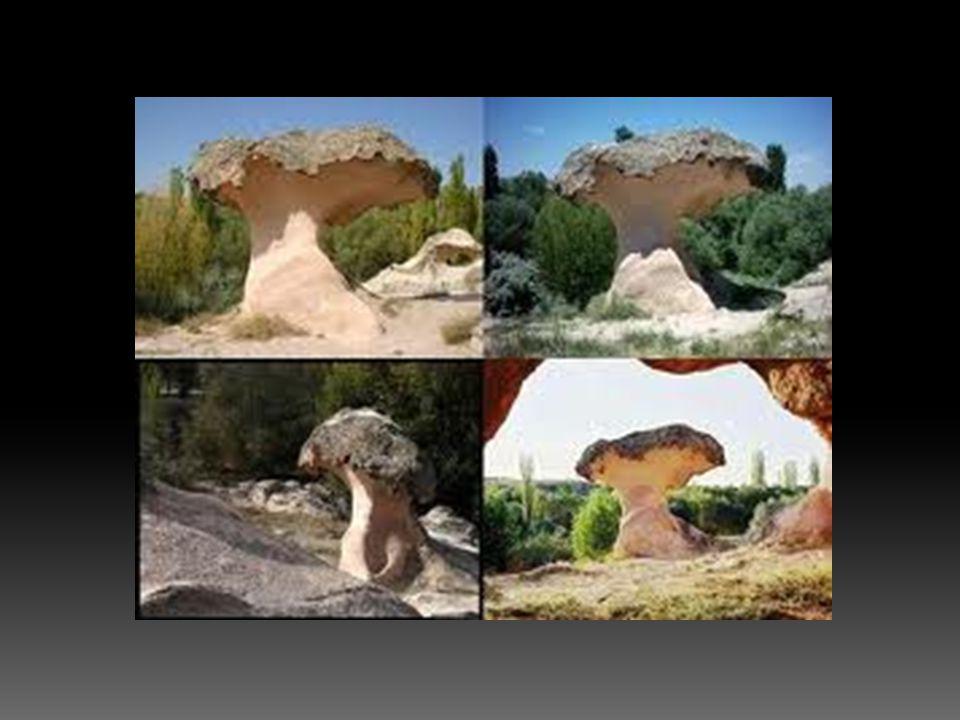  Kurak bölgelerde kum taşı gibi gevşek dokulu kayaların çabuk çözülen bölümlerindeki kumların rüzgar tarafından taşınmasıyla oluşan oyuklardır.