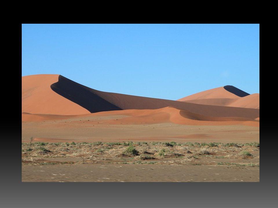  Rüzgar tarafından taşınan ince unsurlu malzemelerin, bir örtü halinde yarıkurak alanlarda birikmesi ile oluşan topraklardır.