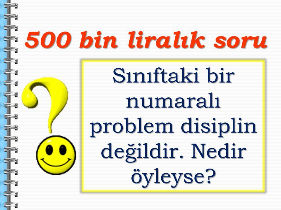 500 bin liralık soru Sınıftaki bir numaralı problem disiplin değildir. Nedir öyleyse?