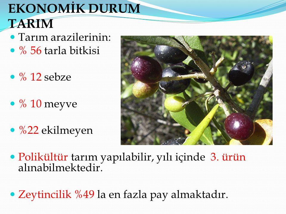 EKONOMİK DURUM TARIM Tarım arazilerinin: % 56 tarla bitkisi % 12 sebze % 10 meyve %22 ekilmeyen Polikültür tarım yapılabilir, yılı içinde 3. ürün alın