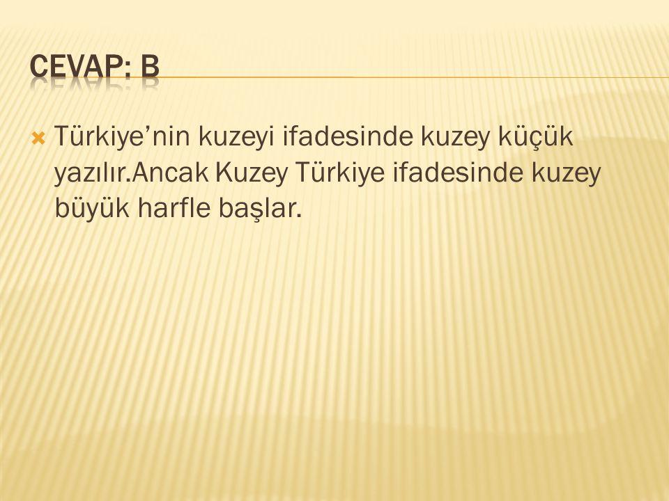  Türkiye'nin kuzeyi ifadesinde kuzey küçük yazılır.Ancak Kuzey Türkiye ifadesinde kuzey büyük harfle başlar.