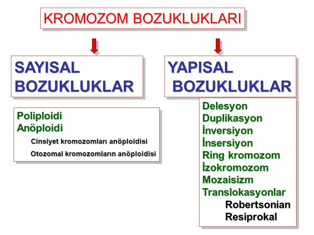 KROMOZOM BOZUKLUKLARI YAPISAL BOZUKLUKLAR BOZUKLUKLARYAPISAL DelesyonDuplikasyonİnversiyonİnsersiyon Ring kromozom İzokromozomMozaisizmTranslokasyonlar Robertsonian Robertsonian Resiprokal ResiprokalDelesyonDuplikasyonİnversiyonİnsersiyon Ring kromozom İzokromozomMozaisizmTranslokasyonlar Robertsonian Robertsonian Resiprokal Resiprokal