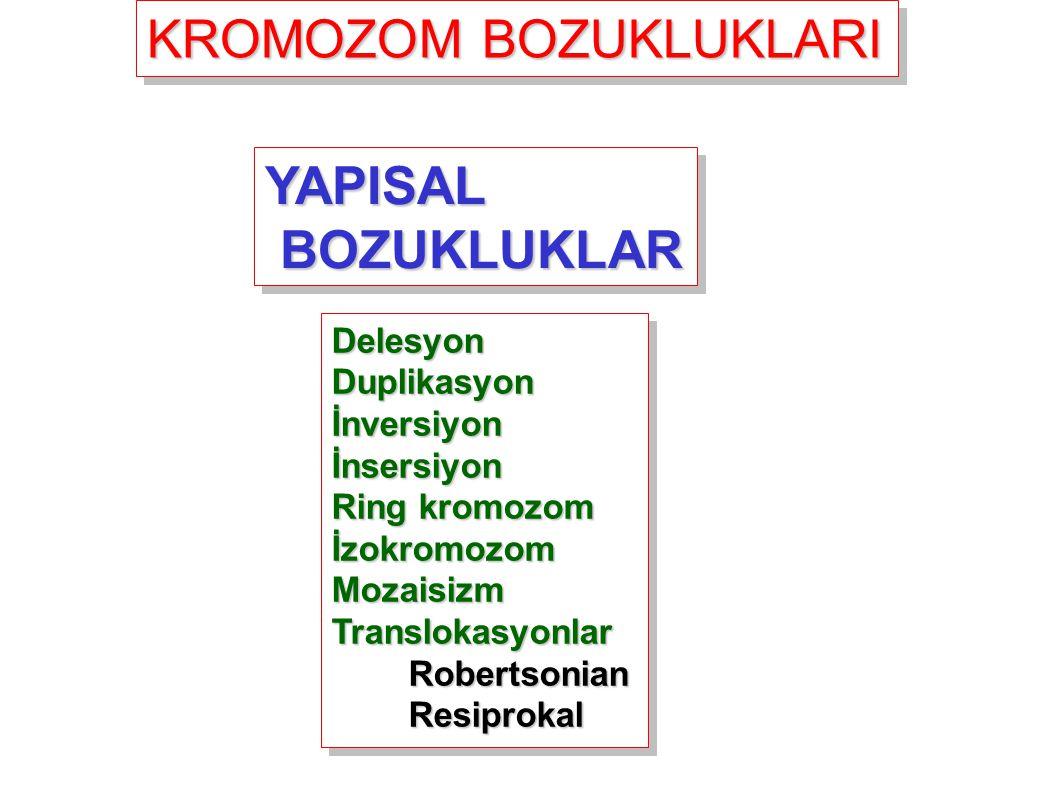 KROMOZOM BOZUKLUKLARI YAPISAL BOZUKLUKLAR BOZUKLUKLARYAPISAL DelesyonDuplikasyonİnversiyonİnsersiyon Ring kromozom İzokromozomMozaisizmTranslokasyonla
