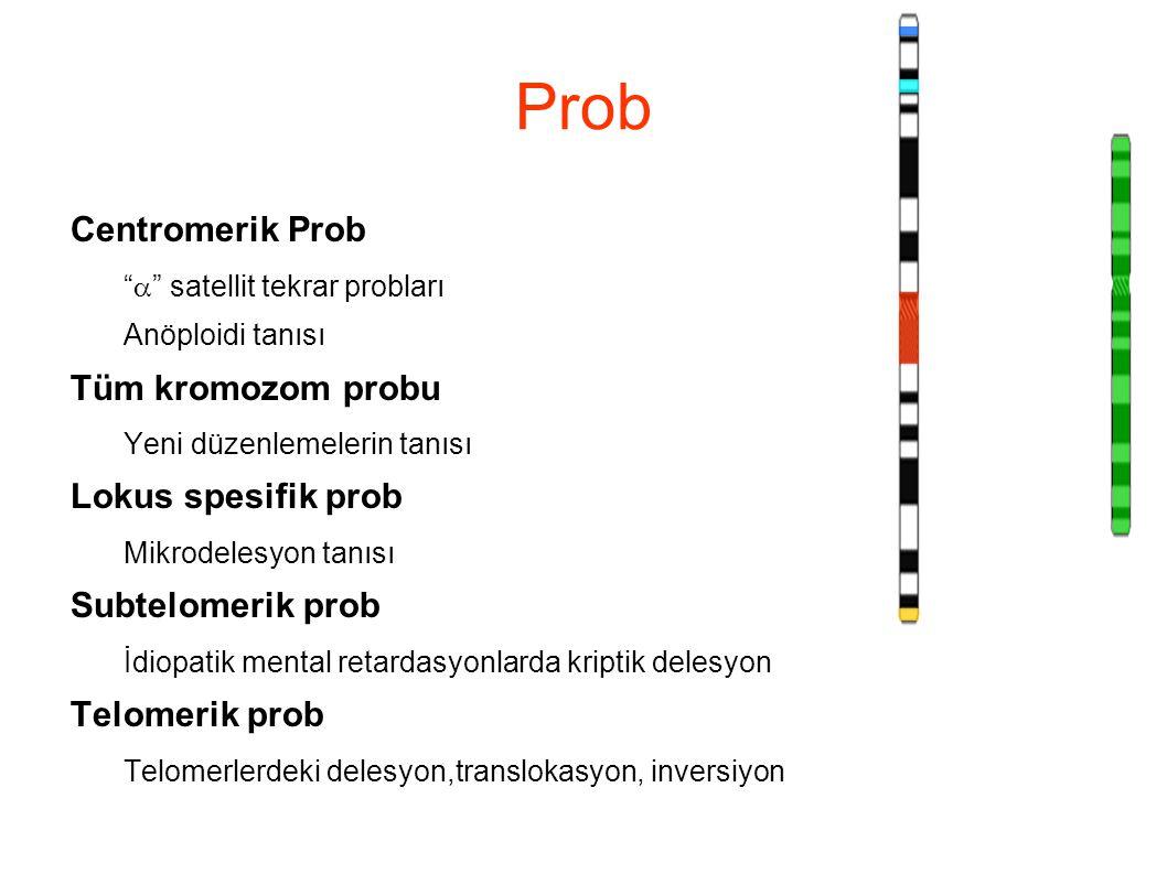 """Prob Centromerik Prob """"  """" satellit tekrar probları Anöploidi tanısı Tüm kromozom probu Yeni düzenlemelerin tanısı Lokus spesifik prob Mikrodelesyon"""