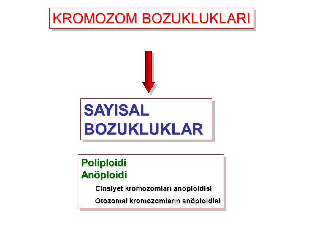KROMOZOM BOZUKLUKLARI SAYISAL BOZUKLUKLAR PoliploidiAnöploidi Cinsiyet kromozomları anöploidisi Cinsiyet kromozomları anöploidisi Otozomal kromozomlar