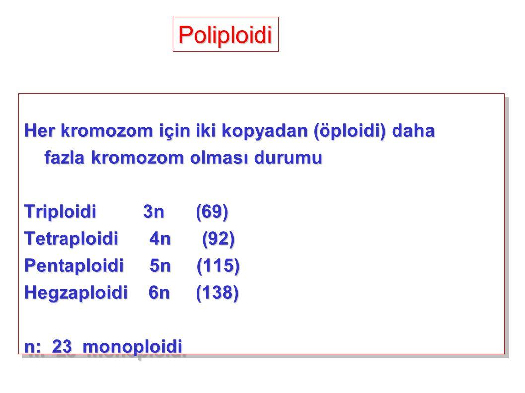 Her kromozom için iki kopyadan (öploidi) daha fazla kromozom olması durumu fazla kromozom olması durumu Triploidi 3n (69) Tetraploidi 4n (92) Pentaplo