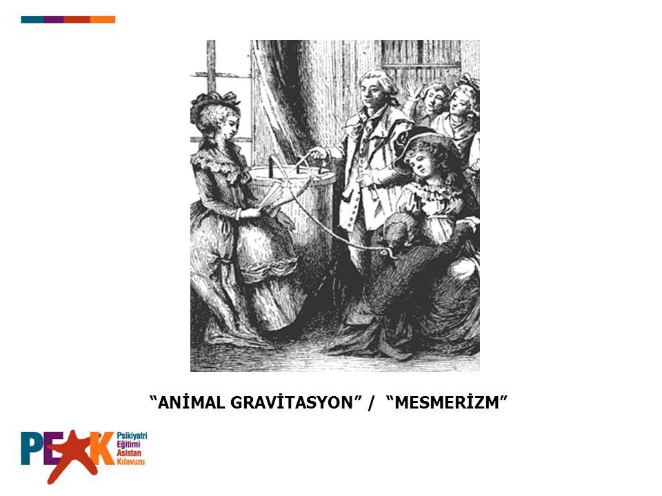 """ANİMAL GRAVİTASYON"" / ""MESMERİZM"""
