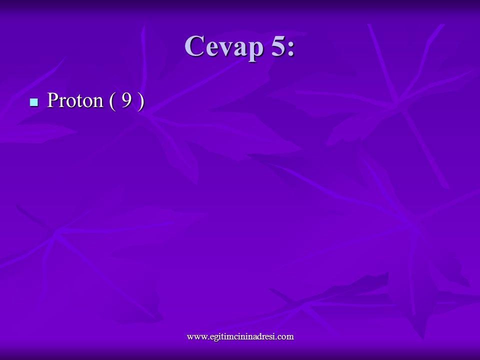 Cevap 5: Proton ( 9 ) Proton ( 9 ) www.egitimcininadresi.com