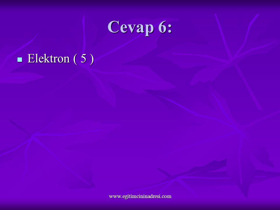 Cevap 6: Elektron ( 5 ) Elektron ( 5 ) www.egitimcininadresi.com