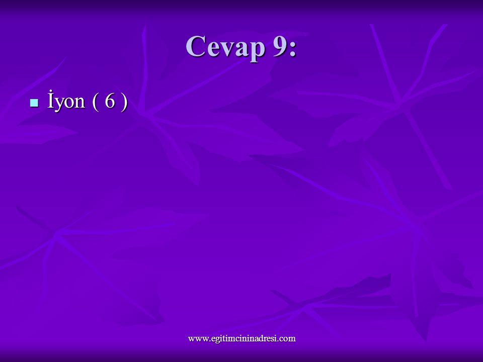 Cevap 9: İyon ( 6 ) İyon ( 6 ) www.egitimcininadresi.com