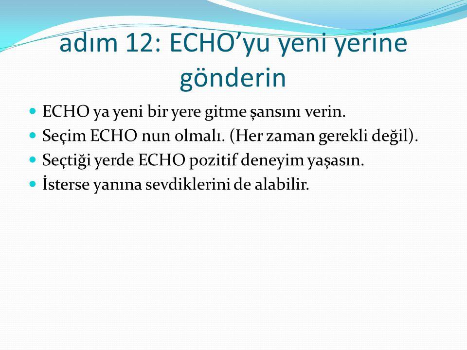 adım 12: ECHO'yu yeni yerine gönderin ECHO ya yeni bir yere gitme şansını verin.