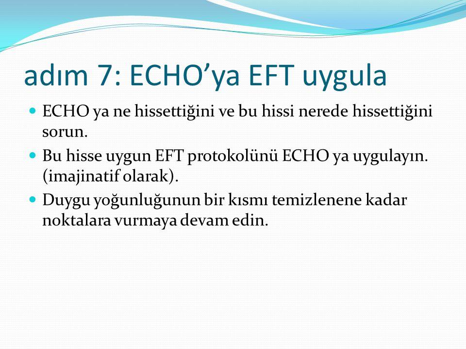 adım 7: ECHO'ya EFT uygula ECHO ya ne hissettiğini ve bu hissi nerede hissettiğini sorun.