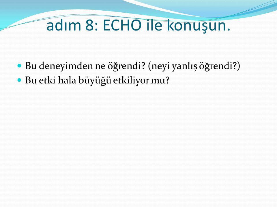 adım 9: anıyı değiştirin ECHO 'nun durumu çözmek için ek araçlara ihtiyacı var mı.