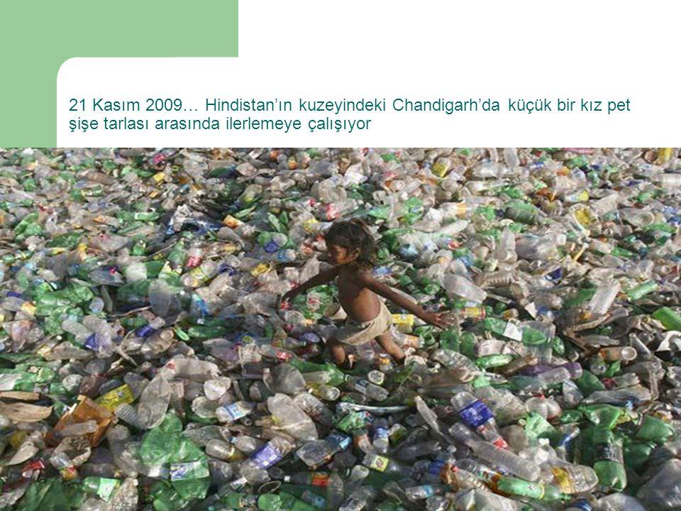 21 Kasım 2009… Hindistan'ın kuzeyindeki Chandigarh'da küçük bir kız pet şişe tarlası arasında ilerlemeye çalışıyor
