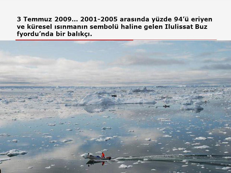 29 Temuz 2009… Bir kutup ayısı, Grönland ve Kanada arasında yer alan Robenson Kanalı'ında ileliyor.