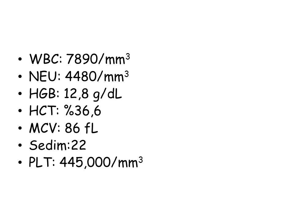 WBC: 7890/mm 3 NEU: 4480/mm 3 HGB: 12,8 g/dL HCT: %36,6 MCV: 86 fL Sedim:22 PLT: 445,000/mm 3