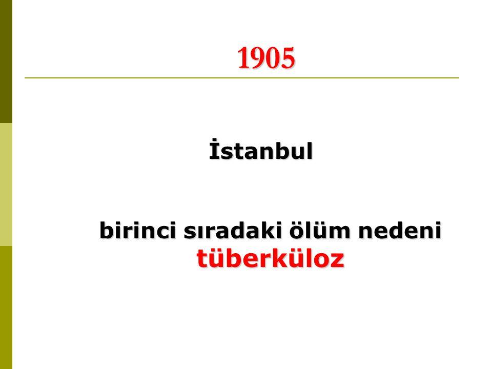 1905 İstanbul birinci sıradaki ölüm nedeni tüberküloz