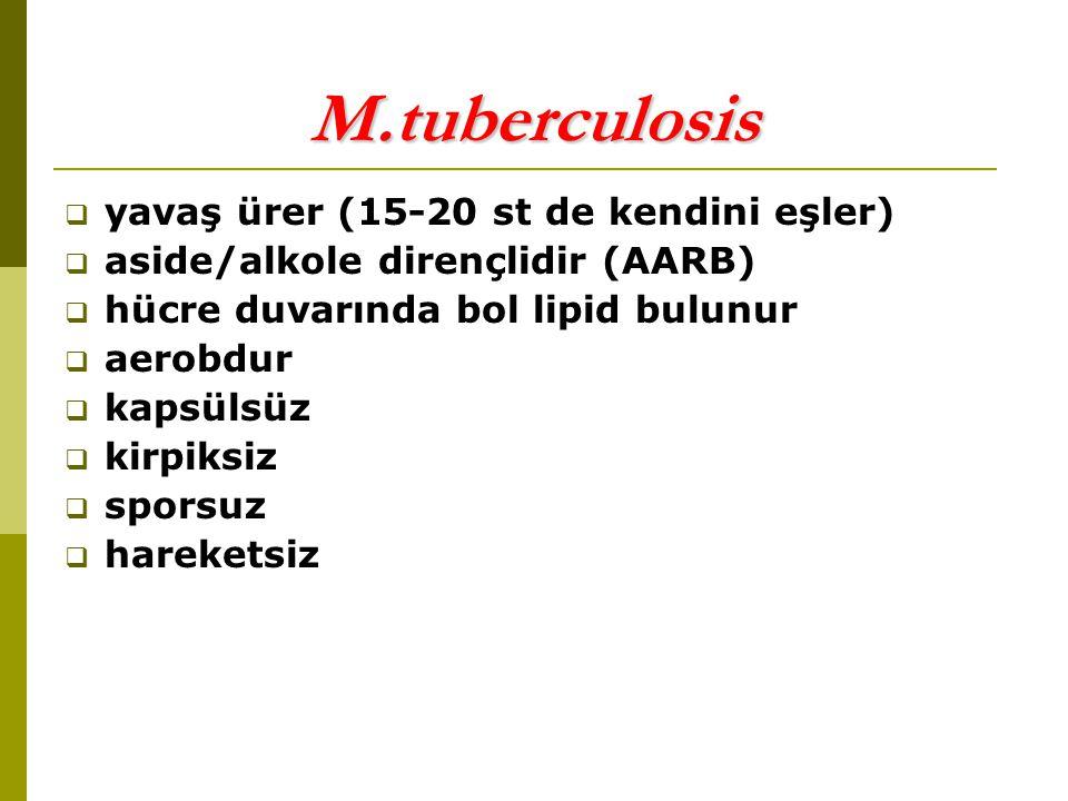DOĞAL İMMÜNİTE  IL-12  Nramp (natural resistance associated macrophage protein)  Nötrofiller, NK hc.ler, / hc.ler, / hc.ler  GM-CSF, basilin nötrofillerce fagositozunu 