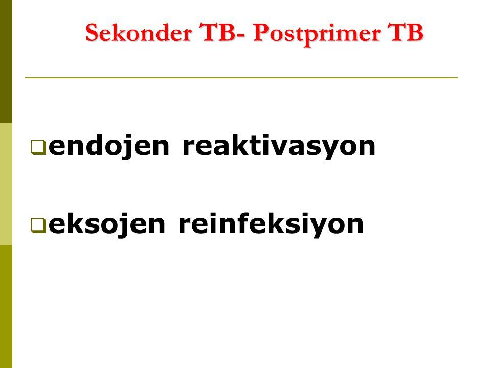 Sekonder TB- Postprimer TB  endojen reaktivasyon  eksojen reinfeksiyon