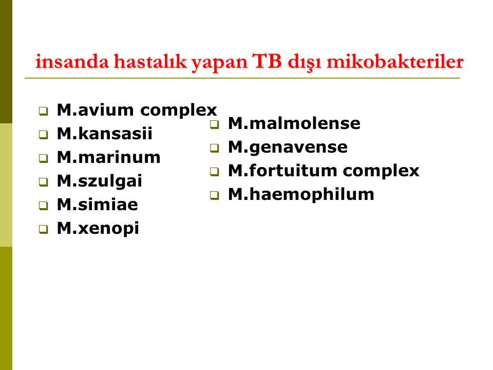 insanda hastalık yapan TB dışı mikobakteriler insanda hastalık yapan TB dışı mikobakteriler  M.avium complex  M.kansasii  M.marinum  M.szulgai  M.simiae  M.xenopi  M.malmolense  M.genavense  M.fortuitum complex  M.haemophilum