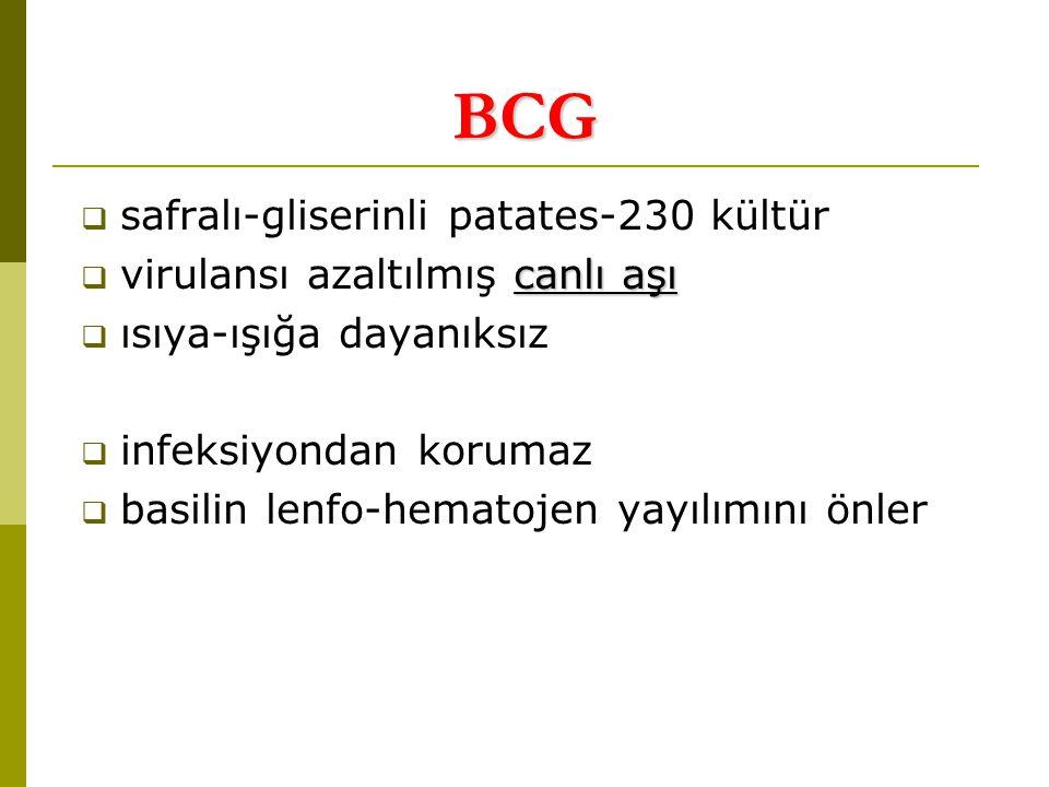 BCG  safralı-gliserinli patates-230 kültür canlı aşı  virulansı azaltılmış canlı aşı  ısıya-ışığa dayanıksız  infeksiyondan korumaz  basilin lenfo-hematojen yayılımını önler