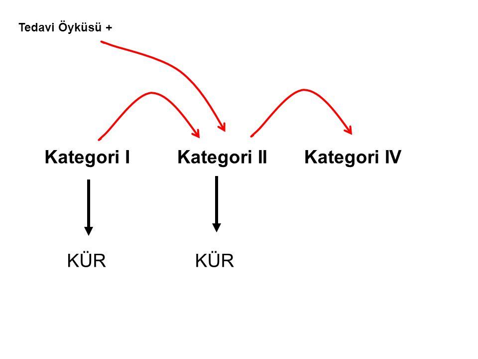 Kategori IKategori IIKategori IV KÜR Tedavi Öyküsü +