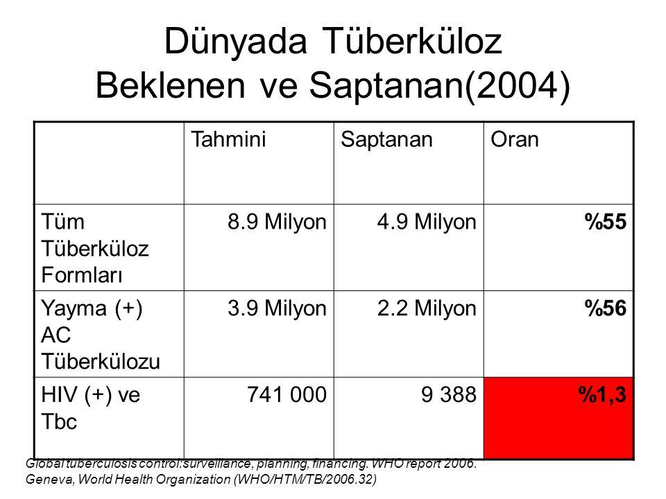 Tahmin edilen yeni tüberküloz hasta dağılımı (2004)