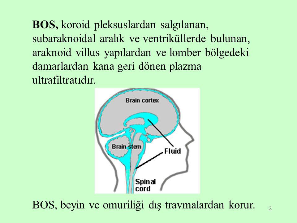 2 BOS, koroid pleksuslardan salgılanan, subaraknoidal aralık ve ventriküllerde bulunan, araknoid villus yapılardan ve lomber bölgedeki damarlardan kan