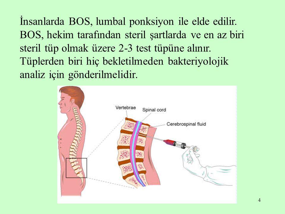 5 BOS analizi, subaraknoid kanamalarını, beyin ve omurilik zarlarını tutan iltihabi hastalıkların tanı, ayırıcı tanı ve tedavilerinin takibinde büyük öneme sahiptir.