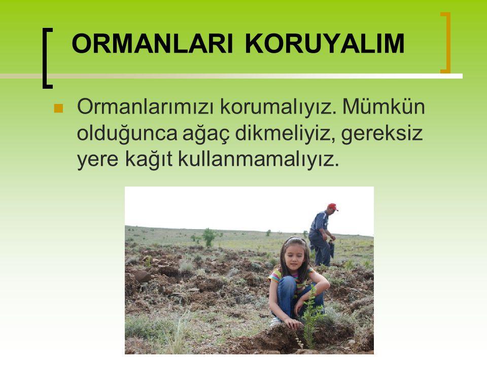 ORMANLARI KORUYALIM Ormanlarımızı korumalıyız. Mümkün olduğunca ağaç dikmeliyiz, gereksiz yere kağıt kullanmamalıyız.
