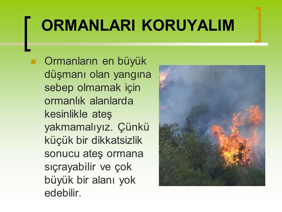 ORMANLARI KORUYALIM Ormanların en büyük düşmanı olan yangına sebep olmamak için ormanlık alanlarda kesinlikle ateş yakmamalıyız. Çünkü küçük bir dikka