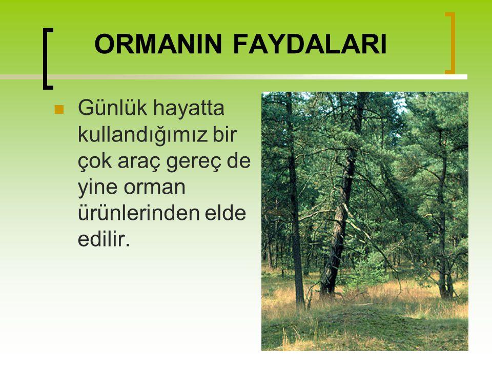 ORMANIN FAYDALARI Günlük hayatta kullandığımız bir çok araç gereç de yine orman ürünlerinden elde edilir.