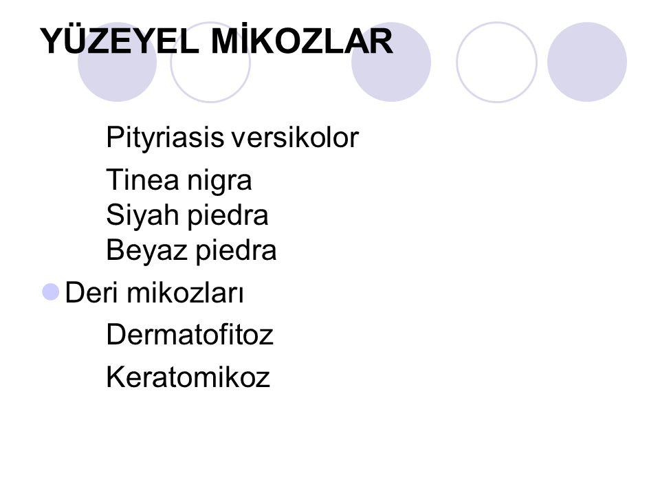 YÜZEYEL MİKOZLAR Pityriasis versikolor Tinea nigra Siyah piedra Beyaz piedra Deri mikozları Dermatofitoz Keratomikoz