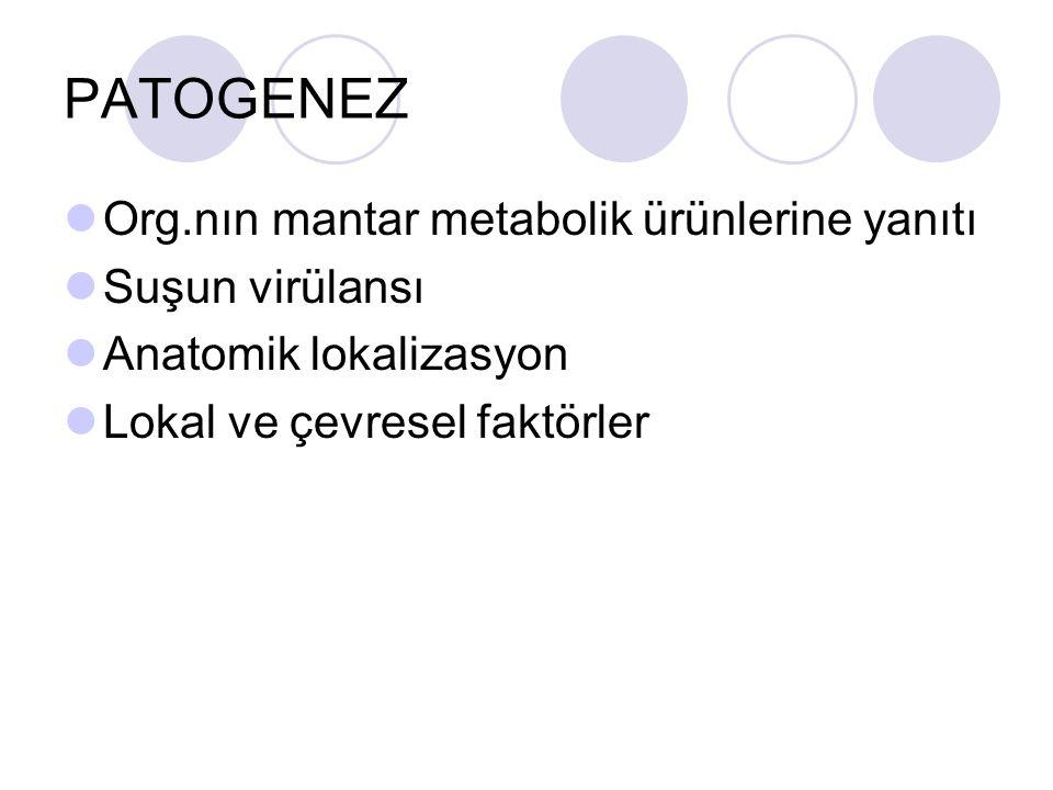 PATOGENEZ Org.nın mantar metabolik ürünlerine yanıtı Suşun virülansı Anatomik lokalizasyon Lokal ve çevresel faktörler