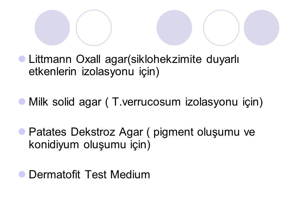 Littmann Oxall agar(siklohekzimite duyarlı etkenlerin izolasyonu için) Milk solid agar ( T.verrucosum izolasyonu için) Patates Dekstroz Agar ( pigment oluşumu ve konidiyum oluşumu için) Dermatofit Test Medium
